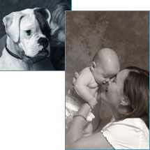 Portrait and Pet Photography